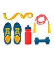 sportsware collection color vector image