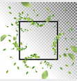 square frame with leaves vector image vector image