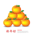Chinese New Year Mandarin oranges vector image vector image