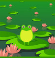 cute frog in pond sitting on leaf water lily vector image