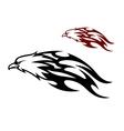 Flying eagle trailing flames vector image