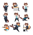 businessman cat in different situations humanized