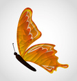butterfly flying vector image vector image
