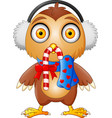 cute cartoon owl in a headphone with candy and sca vector image vector image
