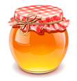 honey isolated vector image