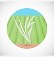 rice plant bag flat icon vector image vector image
