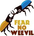 Fear No Weevil vector image vector image