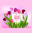 holiday mothers day pink vector image vector image