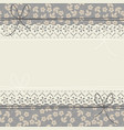 horizontal lace frame with stylish flowers and vector image vector image