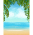palm tree tropical beach vector image vector image