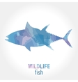 Wildlife banner - fish tuna vector image vector image