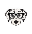 dalmatian dog in glasses cute dog vector image vector image
