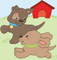 Puppies Playing vector image vector image