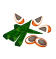 Ripe Areca Nuts and Betel Leaves vector image vector image