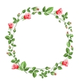 Rose wreath isolated on white vector image