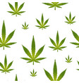 seamless pattern marijuana leaf isolated on white vector image vector image