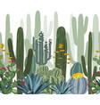 seamless pattern with cactus agave and opuntia vector image