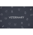 Veterinary Thin Line Icons vector image