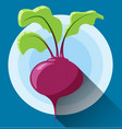 beetroot icon icon in modern flat design vector image