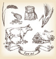 cow farm house wheat vector image vector image