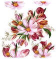 floral seamless pattern with cosmos flowers vector image vector image