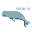 polar dolphin cartoon childish charater for book vector image vector image