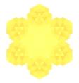 Polygonal Yellow Symbol vector image vector image