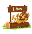 A king lion and the wooden signboard vector image vector image
