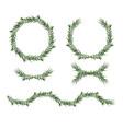 decorative big element set eucalyptus green vector image