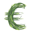 Euro sign from grass vector image vector image