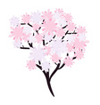 Flowering tree vector image vector image