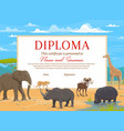 kids diploma certificate template african animals vector image