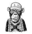 monkey redneck in trucker cap t-shirt with flag vector image vector image