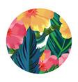 nature flowers cartoon vector image