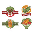 organic product isolated icon tree and plant wheat vector image