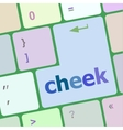 cheek button on computer pc keyboard key vector image vector image