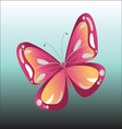 Colorful Butterfly isolated vector image vector image
