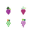 grape logo template vector image
