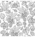 graphic hops pattern vector image vector image