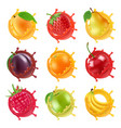 fruits in juicy splashes realistic vector image vector image