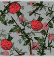 seamless pattern with pomegranate vector image vector image