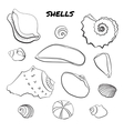 Set of hand drawn shells vector image
