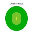 cricket field in real proportions cricket stadium vector image