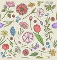 flowers and plants pattern seamless background vector image