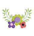 flowers foliage nature botanical isolated icon vector image vector image