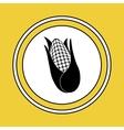 fresh natural corn vector image