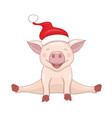 isolated sitting santa piggy on the white vector image