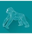 Monkey symbol year 2016 vector image vector image