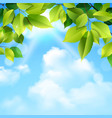 Clouds And Leaves Background vector image vector image