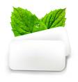 Mint Gum vector image